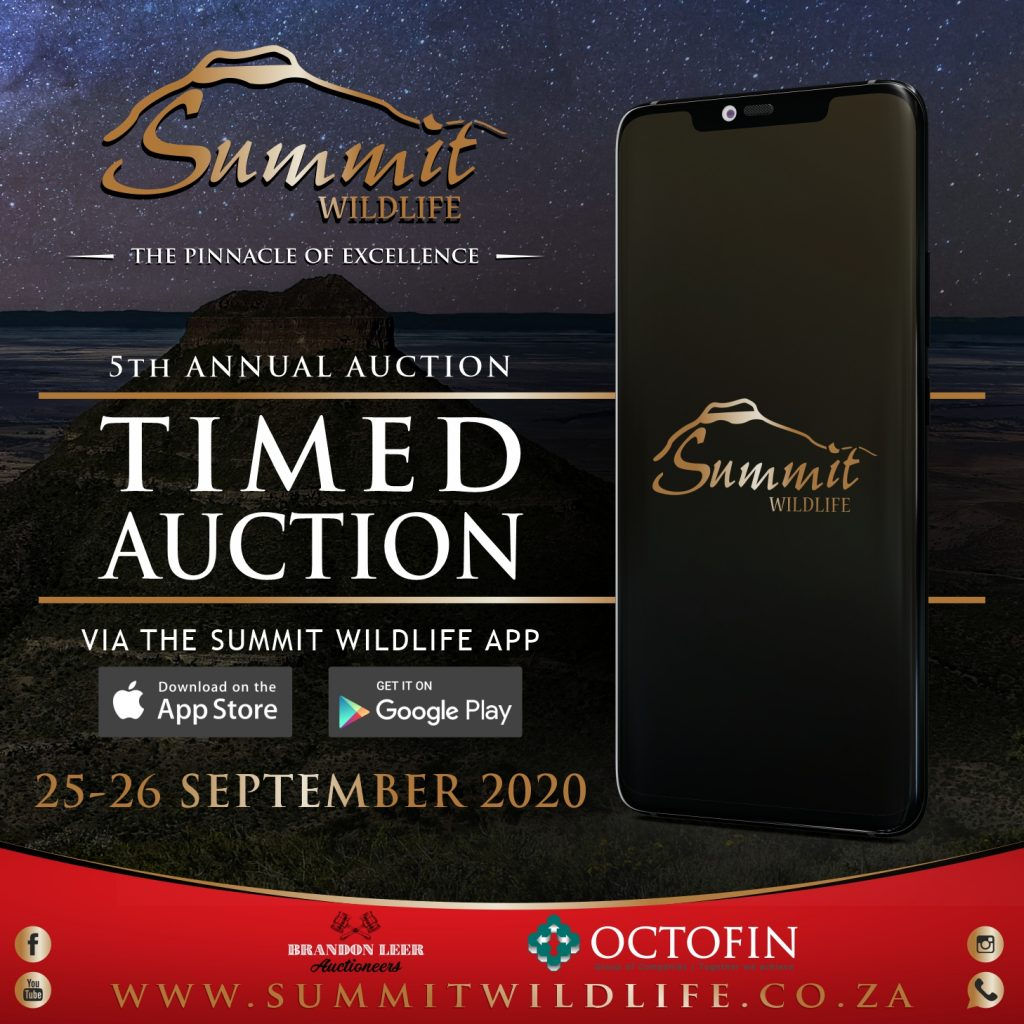 Timed auction anouncement